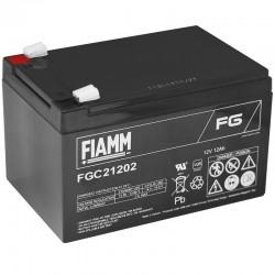 Fiamm Bleiakku - FGC21202_10245