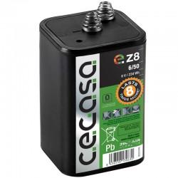 Baulampenbatterie 50Ah CEGASA_10599